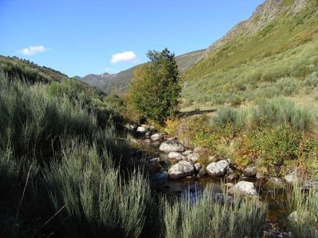 Conservación y Red Natura 2000.