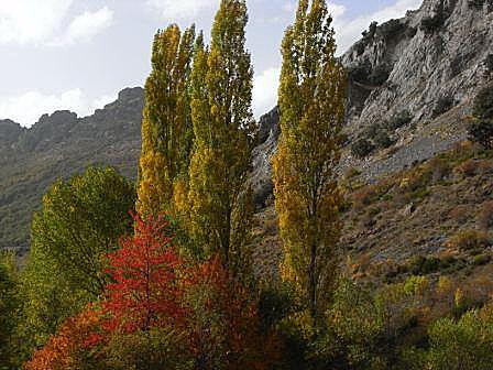 Valle del Curueño (Montuerto)