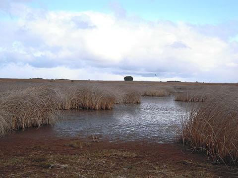 Laguna de Antimio de Abajo