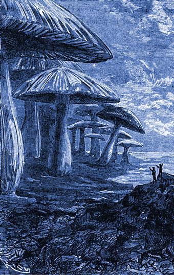 Julio Verne y su colosal bosque de setas
